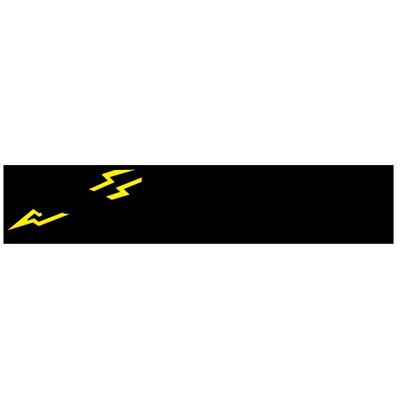 Wadsworth Electric logo